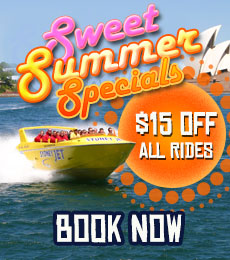 Sweet summer special offers